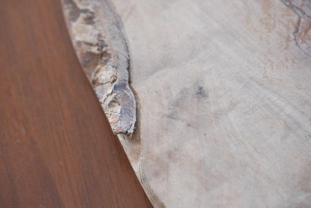 アルテレニョの樹皮